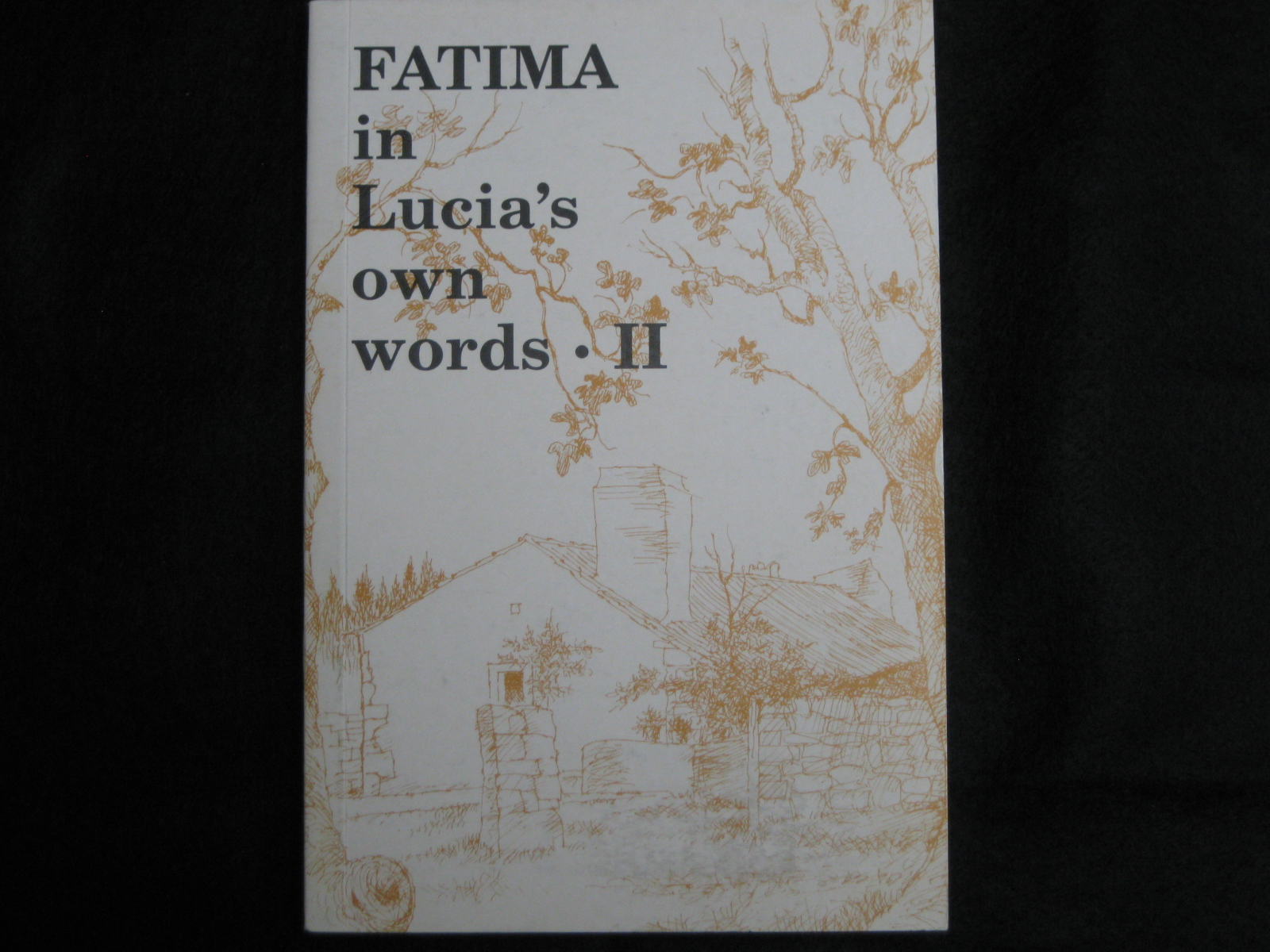 FATIMA IN LUCIA'S OWN WORDS II
